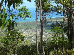 Kaua'i Coastline