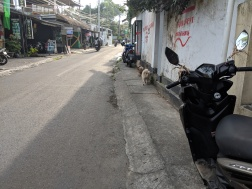 scooter parking