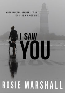 Cover of I saw You